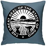 HOJJP Official Seal of Ohio Square Throw Pillow Covers Set Cushion Cases Pillowcases for Sofa Bedroom Car 18 X 18 Inch