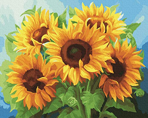 KOSE Paint by Numbers for Adults Beginner & Kids,DIY Oil Painting Kit on Canvas with Paintbrushes and Acrylic Pigment, Arts Craft for Home Wall Decor-Sunflower 16'W X 20'L