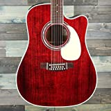 Takamine JJ325SRC-12 John Jorgenson Signature 12-String Acoustic-Electric Guitar with Hard Case