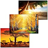 GREAT ART 3er Set XXL Poster Kinder Motive – Dream of the