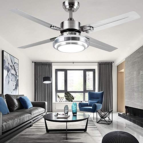 RainierLight Modern Ceiling Fan 4 Stainless Steel Blades...