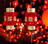 Gyothrig Happy Chinese New Year Red Lantern 2021 Decoration OX, 2 Piece 3D Puzzle Chinese Festival Celebration Party Lucky Gold Fu Decoration, Supplies for Home Outdoor Room Ornaments