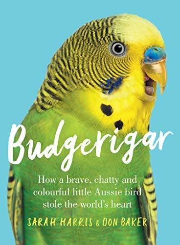 budgerigar society wonderful world budgerigars