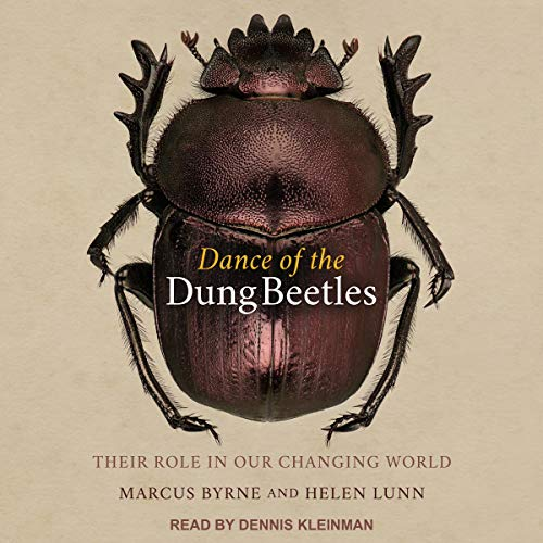 Dance of the Dung Beetles Audiobook By Marcus Byrne, Helen Lunn cover art