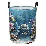Increíble fondo de acuario plegable redondo caja de almacenamiento ropa cesta de lavandería grande