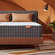 Sweetnight 10 Inch Queen Size Mattress-Infused Gel Memory Foam Mattress for Back Pain Relief & Cool Sleep, Medium Firm, Breeze