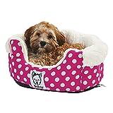 Top 10 Puppy Beds | Best Puppy Dog Beds 4
