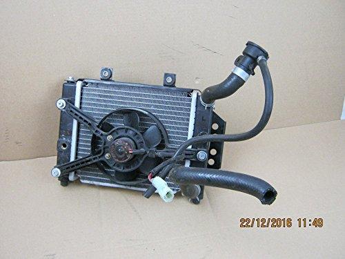 Kühler mit Lüfter für Triton Baja 400 Quad