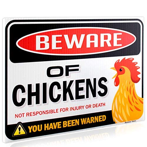 Bigtime Signs Beware of Chickens Warning Sign - 9 inches x 12 inches - Funny Chicken Coop Sign for Chicken Lady Fans and Lovers - Corrugated Plastic - Indoor or Outdoor - Rooster Plaque Gift