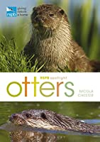 Otters (RSPB Spotlight)