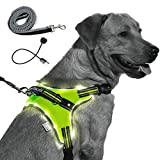 MelonTail Light Up Dog Harness with Bungee Leash-Rechargeable LED Light Dog Vest for Night Walking-Reflective Illuminated Harness for Extra Visibility-Glow in The Dark Lighted Vest for Dogs (Large)
