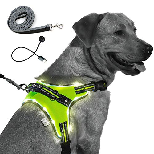 MelonTail Light Up Dog Harness with Bungee Leash-Rechargeable LED Light Dog Vest for Night Walking-Reflective Illuminated Harness for Extra Visibility-Glow in The Dark Lighted Vest for Dogs (Small)