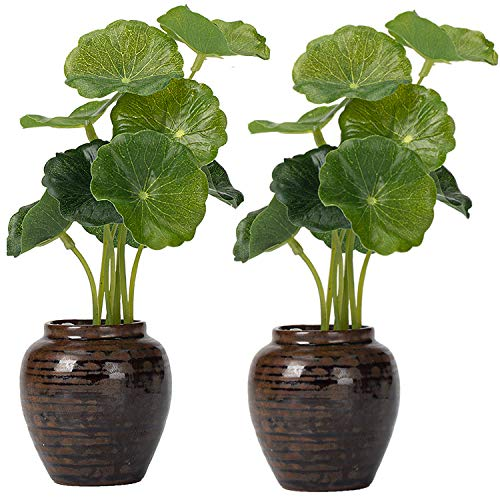 Mini Ceramic Plant Pots, Rustic Style Cute Little Pots for Plants, with Mini green plants, 2-Pot, primitive decor, Thumb Flower Pots for Small Plants and Decorative Objects - 2.5in*3.1in