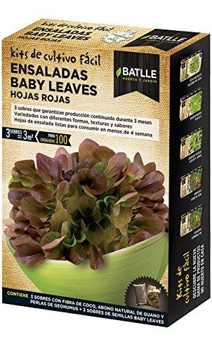 Semillas Batlle – Petites pousses de Salade Baby Leaves, Feuilles Rouges