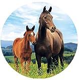 Tortenaufleger * Pferde * als Deko für Torten und...