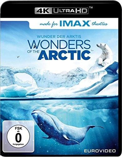 Wonders of the Arctic (4K Ultra HD) [Blu-ray]