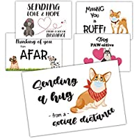 Gooji Dogs Social Distancing Thinking of You Blank Postcards To Send To Friends & Family, Total of 20 4 inchx6 inch Fill In Notecards (4 of each design) [並行輸入品]