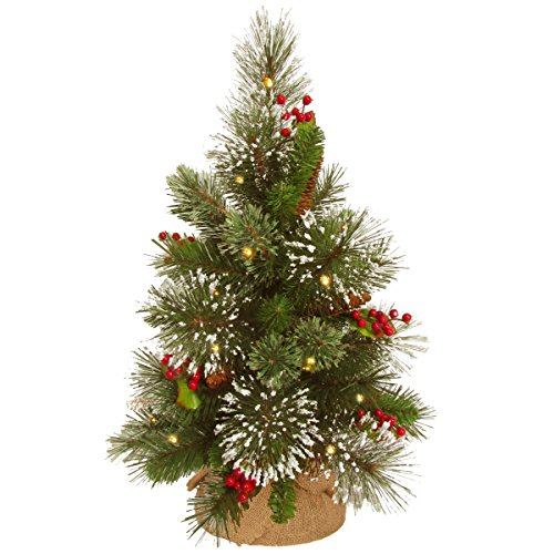 National Tree Company Pre-lit Artificial Mini Christmas Tree Includes Small White LED Lights, Cones, Red Berries, Snowflakes and Cloth Bag Base, 18 Inch, Wintry Pine