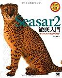 Seasar2徹底入門 SAStruts/S2JDBC対応