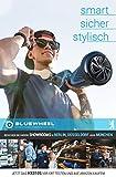 Bluewheel HX310s - 5