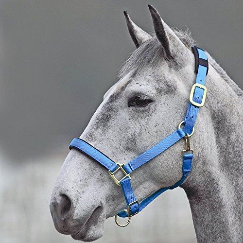 Shires Topaz - Cabestro para caballos