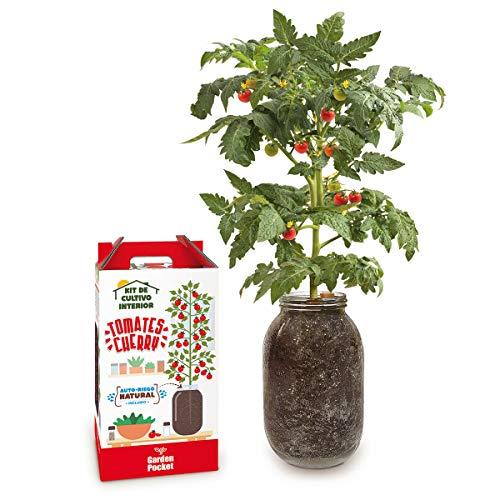 Kit Cultivo Interior Tomate Cherry con AUTORIEGO NATURAL -Garden Pocket