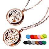 RoyAroma 2PCS Rose Gold Aromatherapy Essential Oil Diffuser Pendant Locket Necklace, 24' Adjustable...