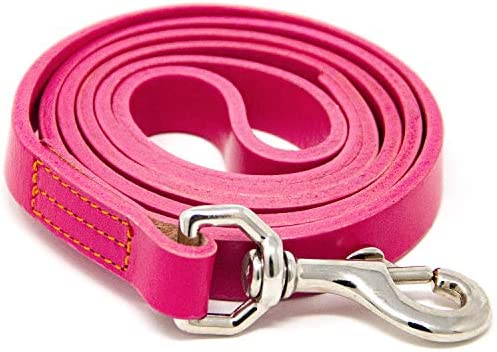 Logical Leather 4 Foot Dog Leash Best for Training Water Resistant Heavy Full Grain Leather product image