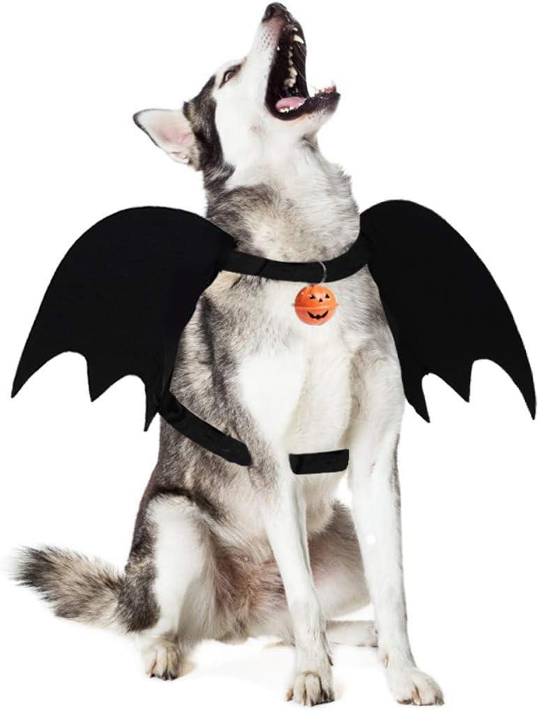 Vleermuis vleugels honden kostuum