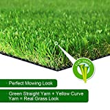 SV Household Decor Realistic Deluxe Artificial Grass Synthetic Thick Lawn Turf Carpet -Perfect for Indoor/Outdoor Landscape (6 FT x 12 FT (72 Square FT))