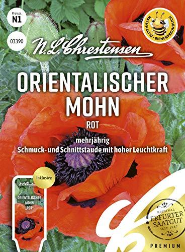 Orientalischer Mohn Rot, Schmuck- und Schnittstaude mit hoher Leuchtkraft, mehrjährig, bienenfreundlich, Samen