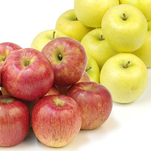 国華園 食品 りんご 青森産 早生りんごセット 10kg 1箱