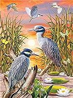 デジタル絵画鳥の動物DIY油絵 数字キットによる絵画使用するブラシとアクリル顔料アートの家の装飾 40x50cm (フレームレス)