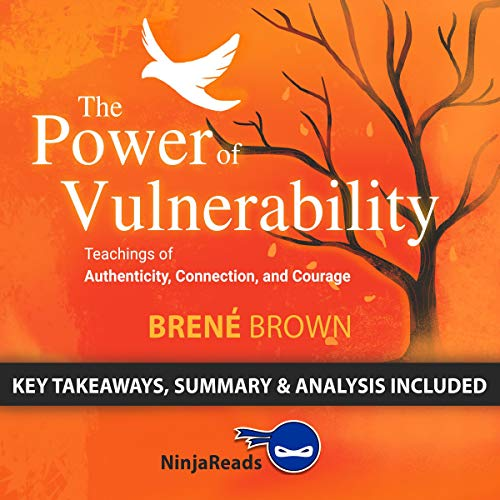 Summary of The Power of Vulnerability cover art