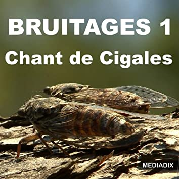 Chant de cigales, Vol. 1