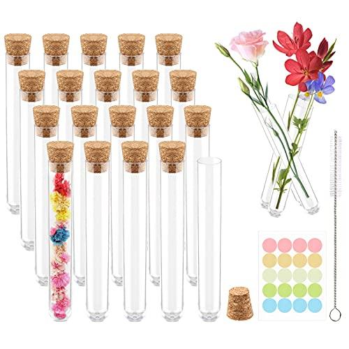 20 tubos de ensayo transparentes con corcho, mini botellas de cristal de 10 ml, con flores, tubos de ensayo de cristal, juego con cepillo de limpieza y colgante. Uso para flores, especias, hierbas