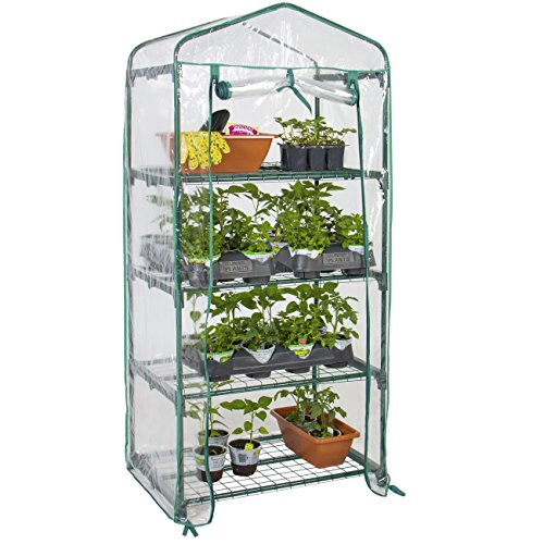 Best Choice Products 4-Tier 27x19x63-inch Mini Greenhouse for Gardens, Patios, and Backyards w/Plastic Cover, Roll-Up Zipper Door, Sturdy Steel Shelves, Clear