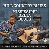 From Hill Country To Mississippi Delta Blues