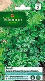 Vilmorin 3790542 Pack de Graines Persil Commun Géant d'Italie
