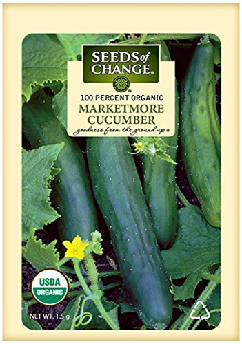 Spacemaster 80 Cucumber Seeds - 50 Seeds Non-GMO
