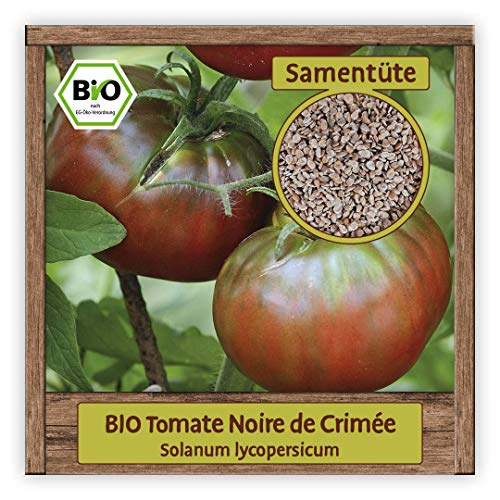 BIO Tomaten Samen alte historische Sorte Noire de Crimée russische Tomate BLACK KRIM