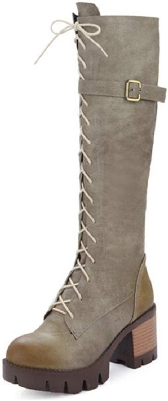 Women Ladies Chunky Heel Calf Boots Platform Punk shoes Faux Fur Grip Sole Winter Autumn Warm Lace Up Zipper Closure Knee High Boots Size