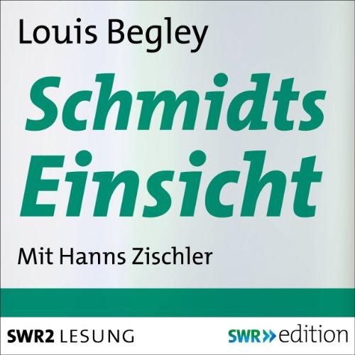 Schmidts Einsicht audiobook cover art