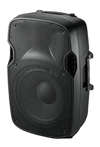 Ibiza XTK15 - Bafles de sonido con ABS pasivo, 15', 38 cm