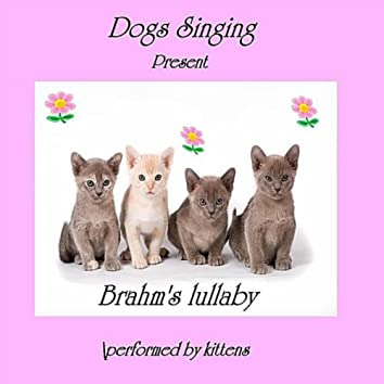 Brahms Lullaby (Cats Meow)