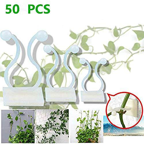 50 Stück Plastikpflanzen-Stützclips Für Tomaten Hängende Gitterreben Verbinden Pflanzen Gewächshausgemüse Gartenverzierung