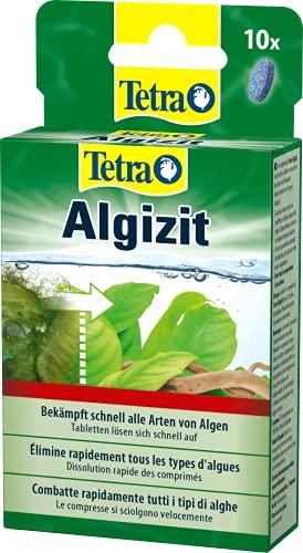 Tetra Algizit - vordosiertes Algenmittel mit schneller Biozid- Wirkung, hilft bei aktuten Algenproblemen im Aquarium, 10 Tabletten