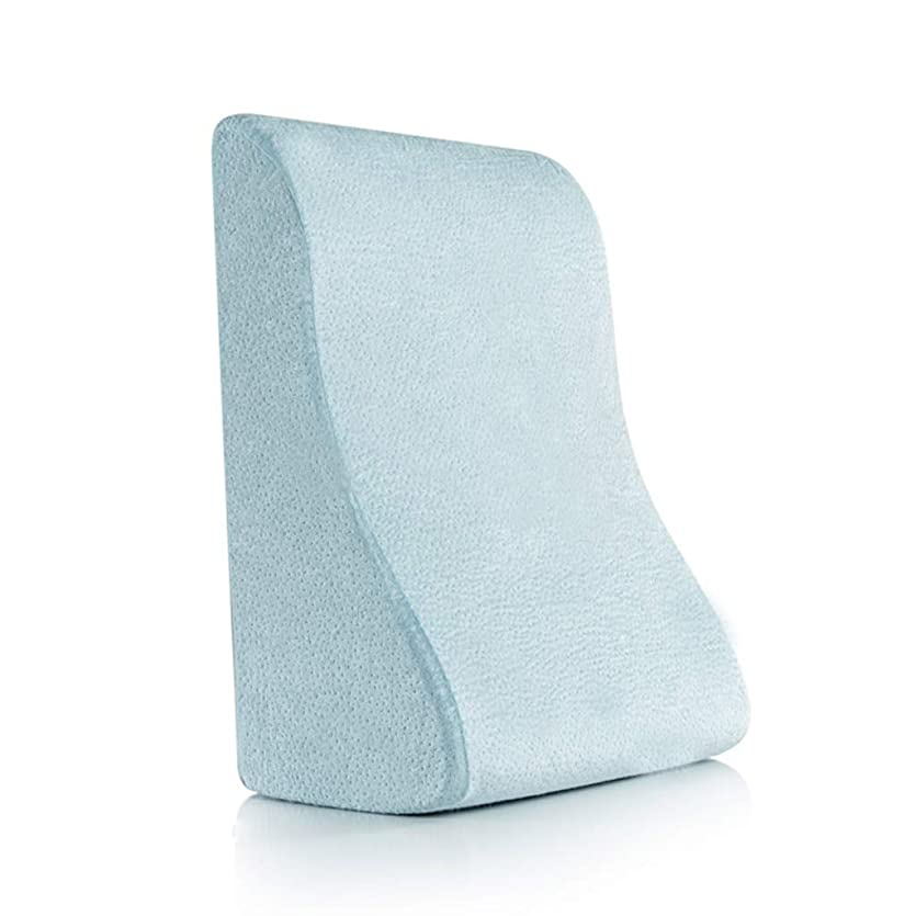 流体相対サイズジャングル18-AnyzhanTrade ベッドくさび枕、背もたれポジショニングサポート、頸椎の保護、低反発ホーム、オフィス用読書レストピロー (Color : 青)