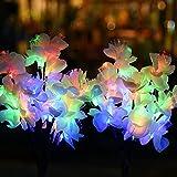 Luces Solares para Jardín Bawoo 2 Piezas Luces Solares Exterior con 40 LED Impermeables Luces Solares Flores de Camelia Lámpara Energía Solar para Jardín, Patio, Césped Decoración