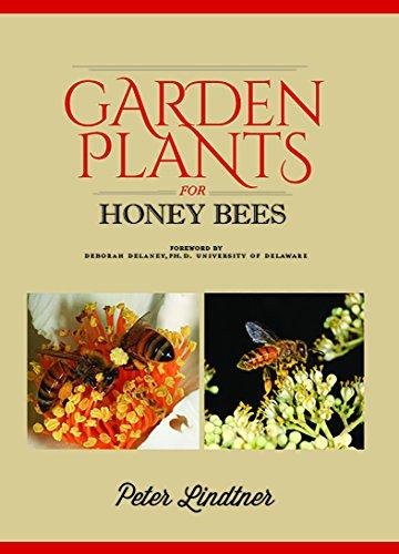 Garden Plants for Honey Bees